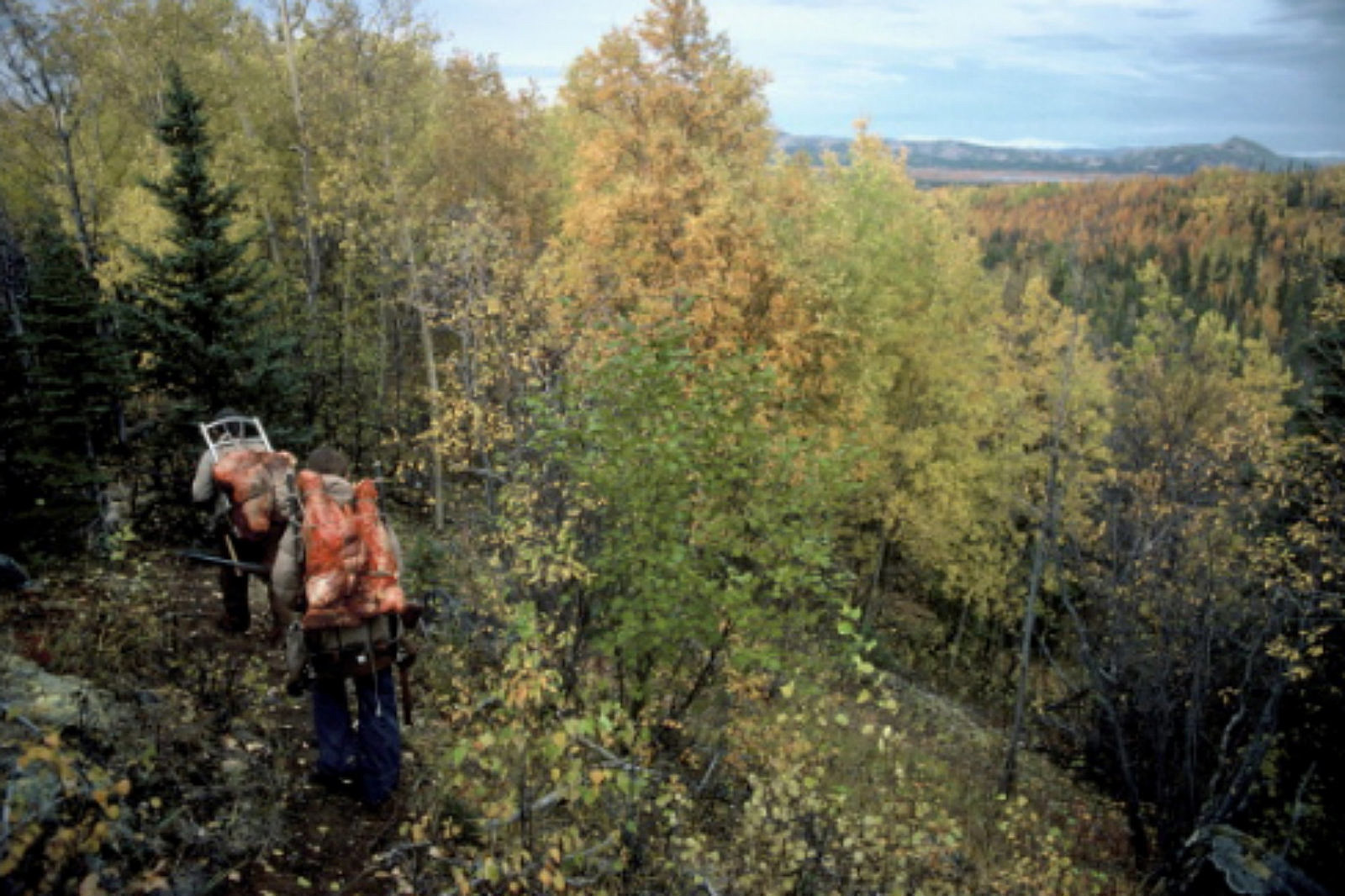 Fishing hunting permits may soon cost more for Colorado fishing license cost